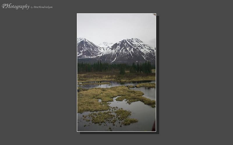 My Alaska 12-08-053.jpg