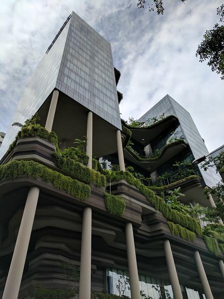 2017JWR-Singapore-182.jpg