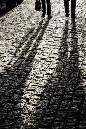 Shadow Portraits