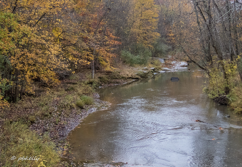 Black River 110517-1.jpg