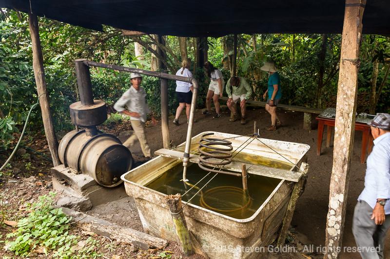 Sugar cane still producing rum