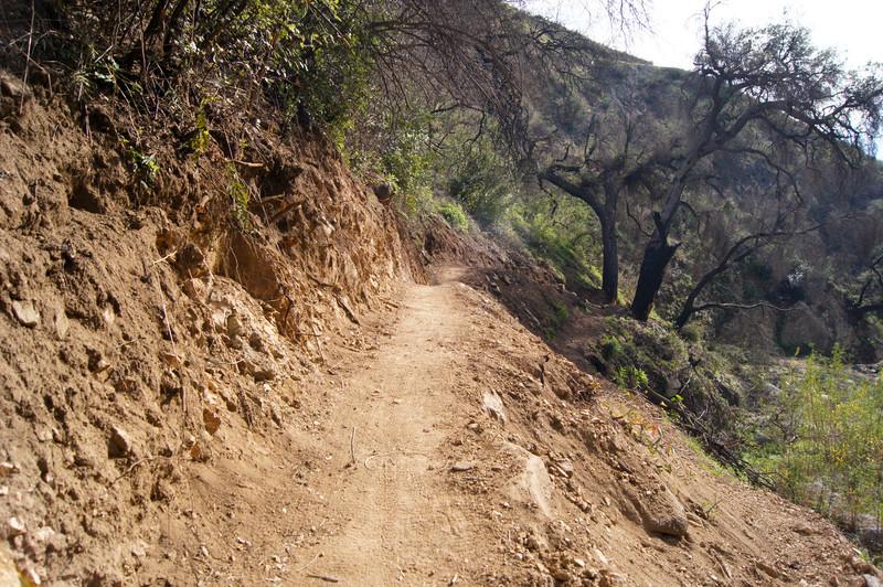 201201291607-El Prieto Trailwork.jpg