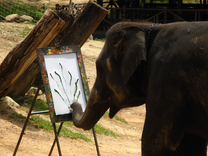Elephant painting at Mae Sa Elephant Camp, Chiang Mai province.