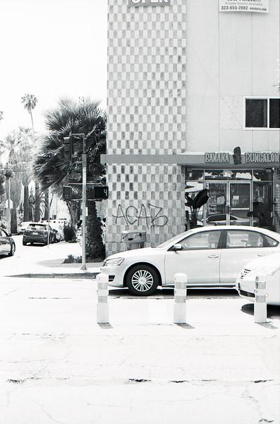 BLMprotest-KodakTMax_01_08.jpg