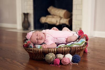 Dock newborn & family portraits May 2020