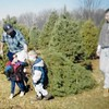 Dad, Ian & Devin getting the Christmas Tree 1997
