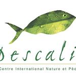 Logo-Pescalis-HR.png