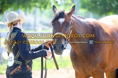 Junior Horse Halter 06/20/21