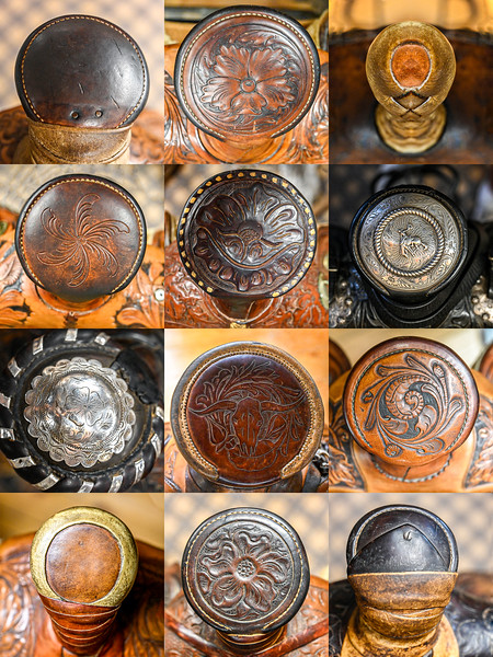 16 horns.jpg
