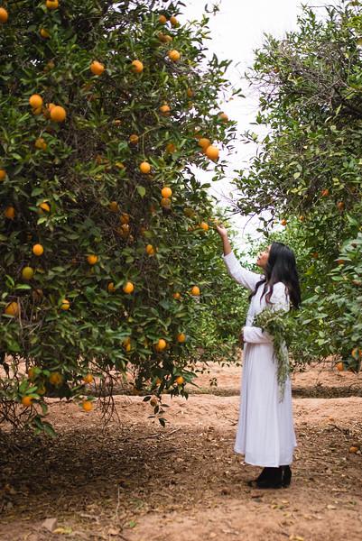 Citrus Styled Shoot (115 of 120).jpg