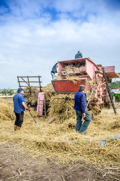 Festival of the Plough 28.09.2014
