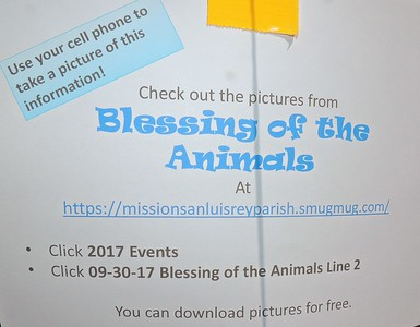 09-30-17 Blessing of the Animals Group 4