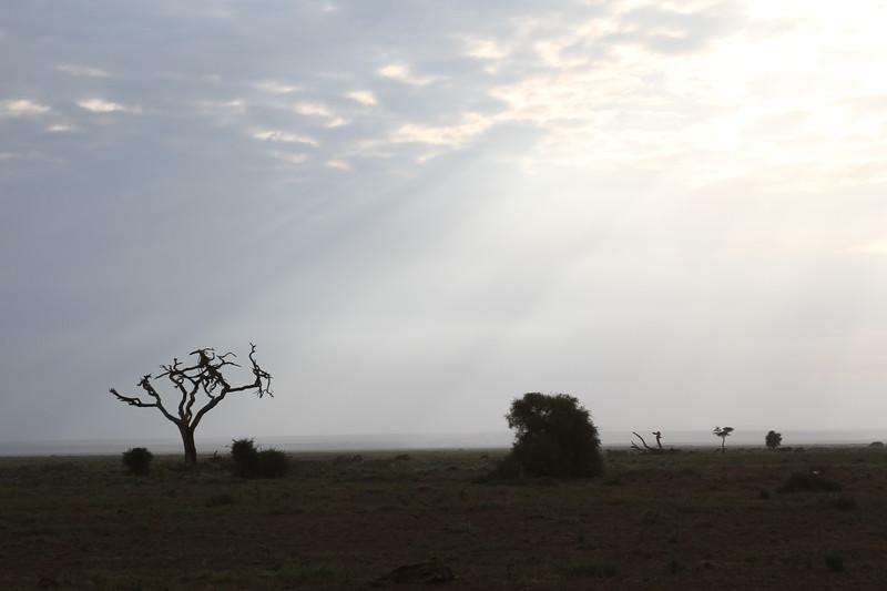 Kenya 2019 #2 255.JPG