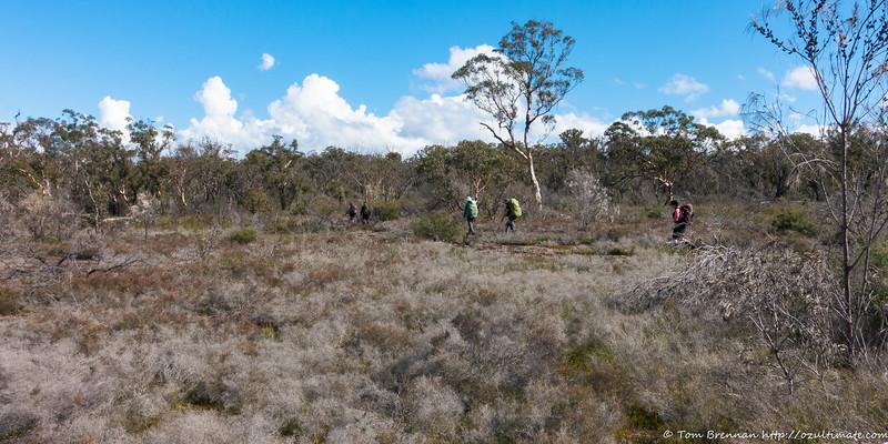 Open walking on the plateau