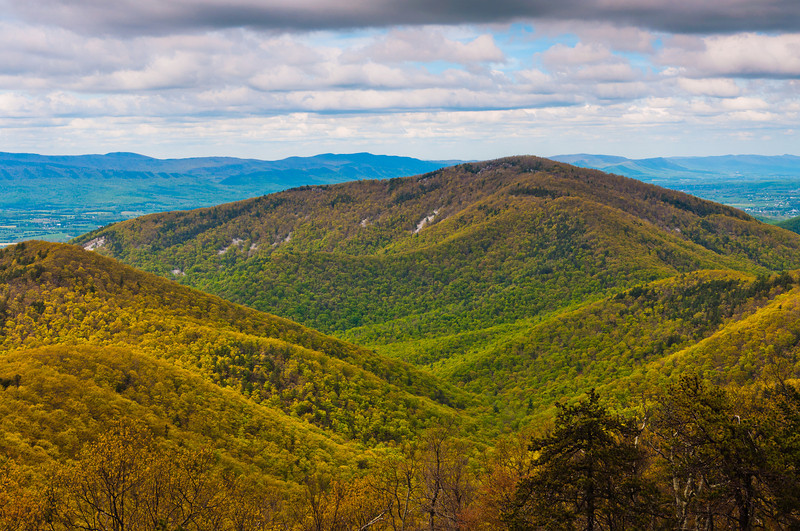 Early spring view of Appalachian Mountains from an overlook on Skyline Drive, Shenandoah National Park, Virginia