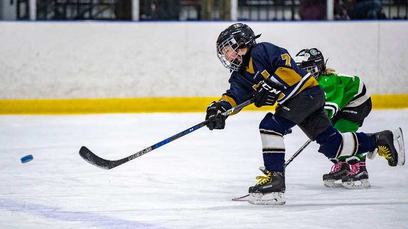 2019-02-03-Ryan-Naughton-Hockey-62.jpg