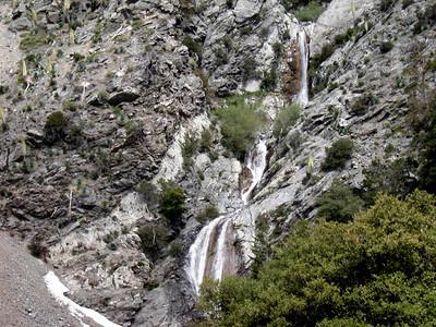 6/13/2010 - Three Tee's Trail