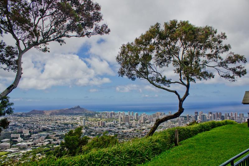 Journey into Oahu Photograph 144