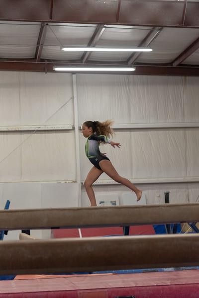 Brianna Gymnastics-0266.jpg