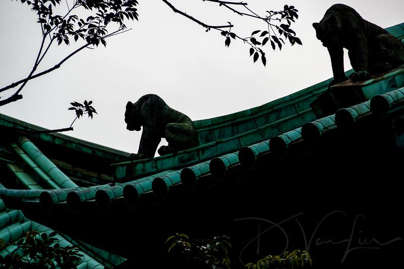 JapanPhotoTour20190204-18.jpg