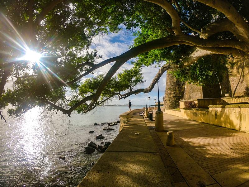 island life meets city life