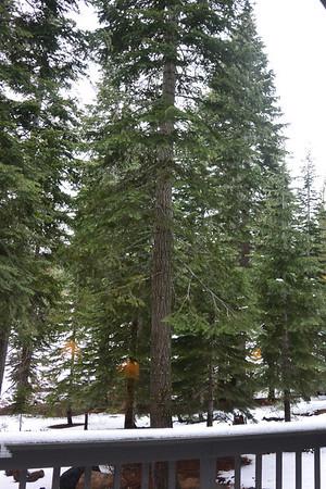 Ski Trip 2014