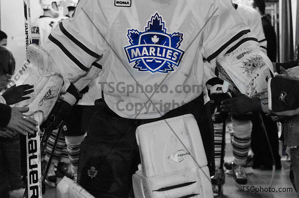 Feb 8 - Marlies vs Rochester - **TIMBITS/FLAG KIDS/ FUTURE STARTERS/ROGERS RACERS pictures - they will be posted soon.  Apologies for the delay.