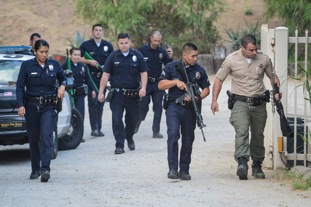 . LAPD and game wardens search for a bear loose in the Shadow Hills area of Sun Valley early Wednesday morning.  The LAPD tracked the bear down and fish and game was able to dart the bear and to be released back into the wild.  Photo by David Crane/Staff Photographer