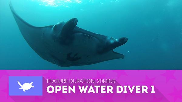 SDSDA Open Water Diver Videos
