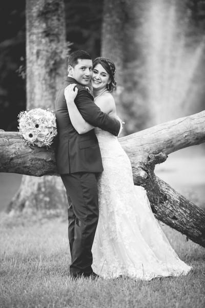 acacia and dan wedding print-1067.jpg