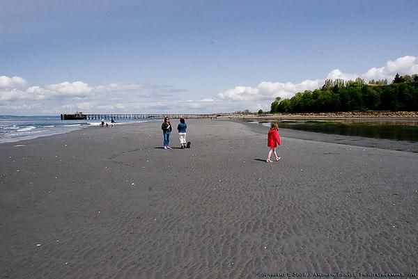 060430 Low Tide at the Beach - Offleash Area Edmonds