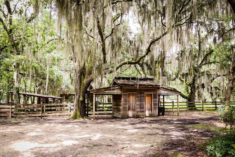 Louisiana plantation tour of slave cabins