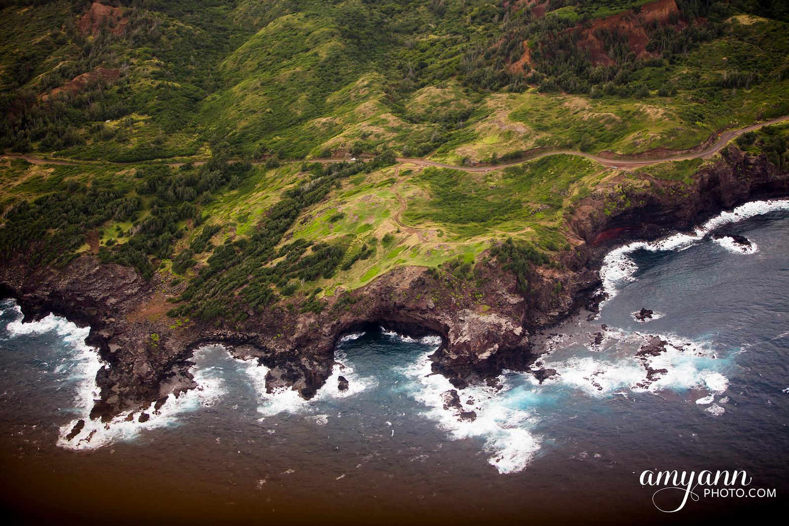 hawaii_amyannphoto_89