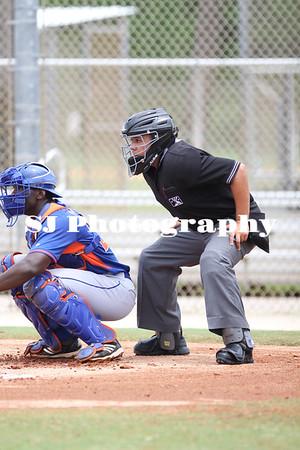 Baseball Umpires