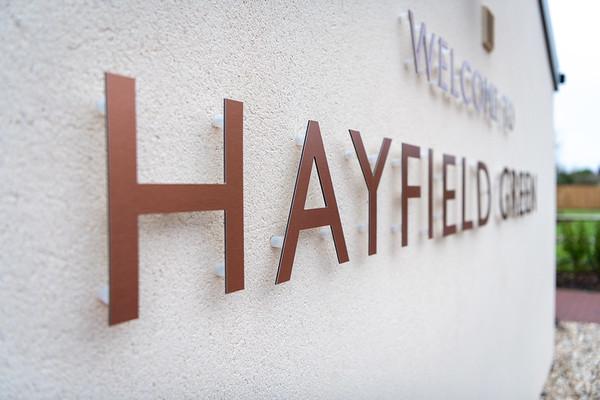 Insinkerator Hayfields edited