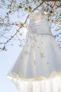 Plascensia Wedding