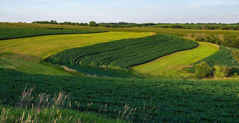 07-30-2020-farm-4.jpg