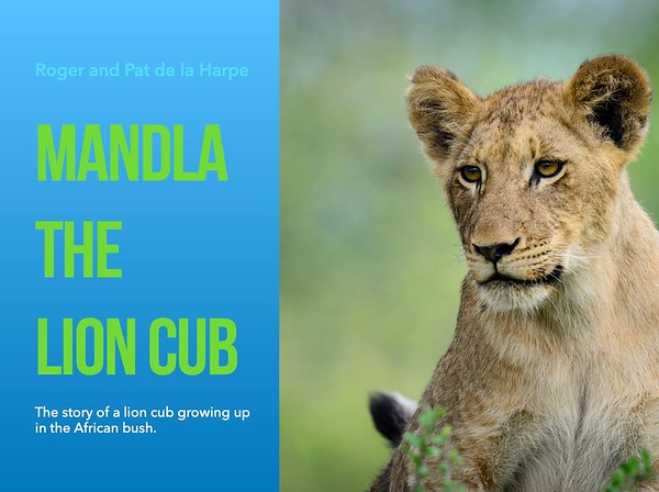 Wildlife eBook - Mandla the Lion Cub