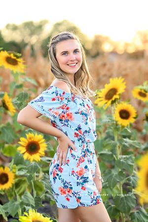 Madison- Sunflower shoot