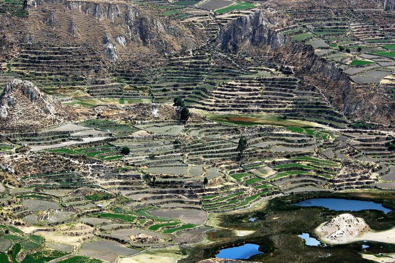 Peru Ecuador 2007-052.jpg