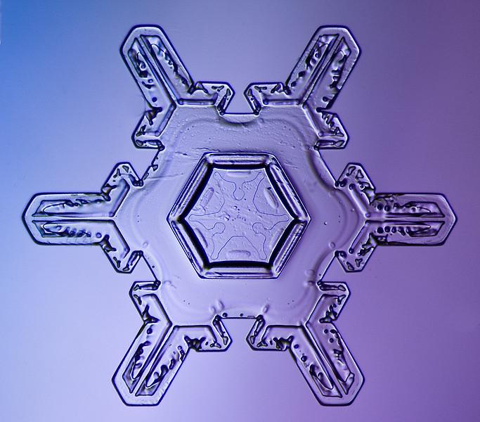 snowflake-5567-Edit.jpg