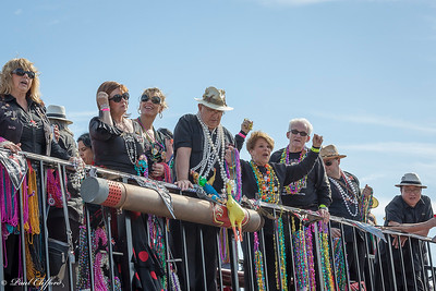 Images from folder Gasparilla 2015