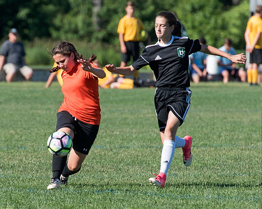 Middleboro Thunersnakes  go to the final four at MTOC