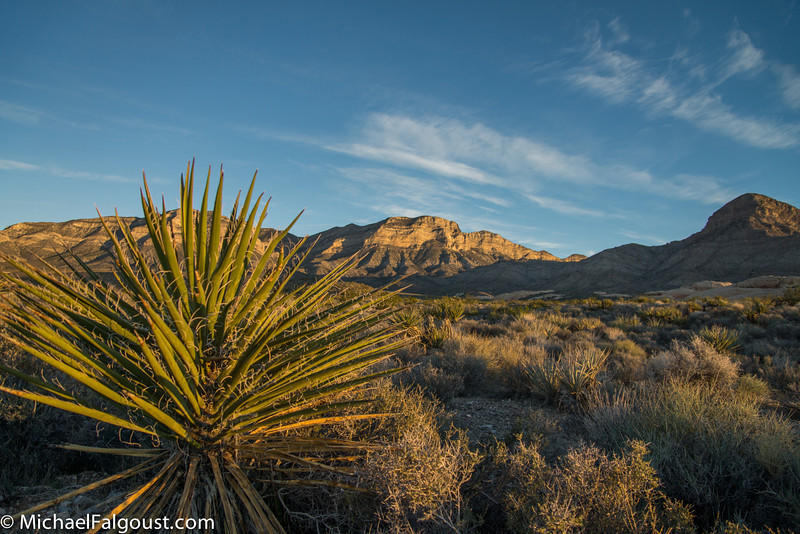 Red_Rock_Canyon12-79.jpg