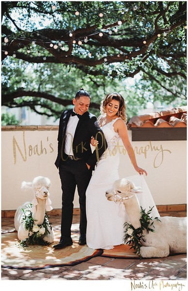 Summertime Styled Shoot | Vendor Gallery