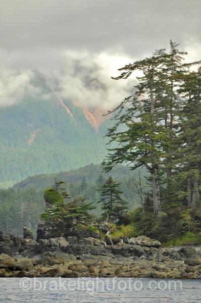 Misty Mountainsides