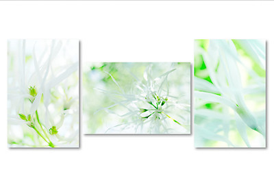 White and green triptych