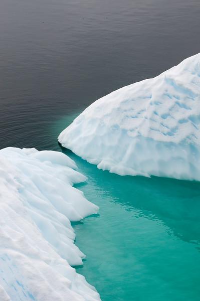 Antarctica 2015 (59 of 99).jpg
