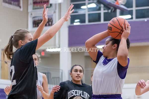Broughton girls basketball vs Wake Forest. November 14, 2019. D4S_0325