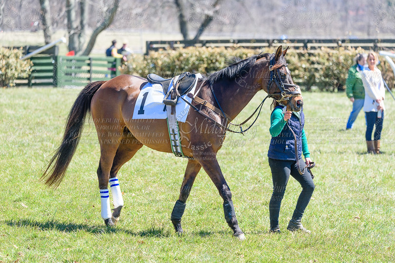 4th Race-Green Spring Valley Hunt Cup